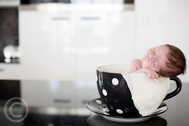 Baby in a Cup - Newborn Kids Photography