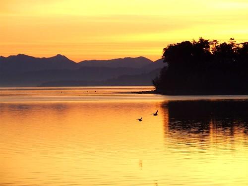 sunrise penncove