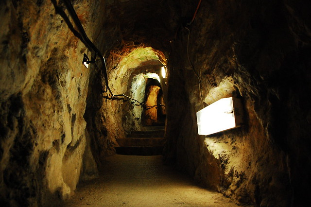 Giant's Cave Walkway in Bristol   Flickr - Photo Sharing!