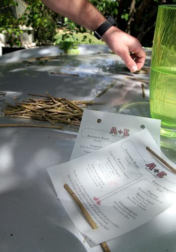 DIY Wedding Programs Our last minute programs were printed on velum