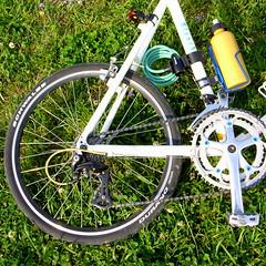 bicycle racing(0.0), hybrid bicycle(0.0), tarmac(0.0), mountain bike(1.0), road bicycle(1.0), wheel(1.0), vehicle(1.0), freeride(1.0), rim(1.0), cycle sport(1.0), land vehicle(1.0), bicycle wheel(1.0), bicycle frame(1.0), bicycle(1.0), spoke(1.0),
