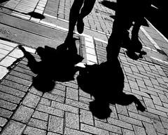 [フリー画像素材] 人物, カップル, シルエット, モノクロ ID:201203221600