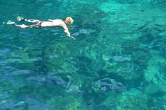coral reef(0.0), marine biology(0.0), diving(0.0), underwater(0.0), swimming(1.0), sports(1.0), sea(1.0), recreation(1.0), outdoor recreation(1.0), water sport(1.0), freediving(1.0), reef(1.0),