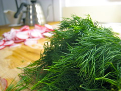 grass, plant, produce, food, dill, fines herbes,