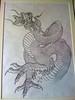 Original dragon art work My original Japanese