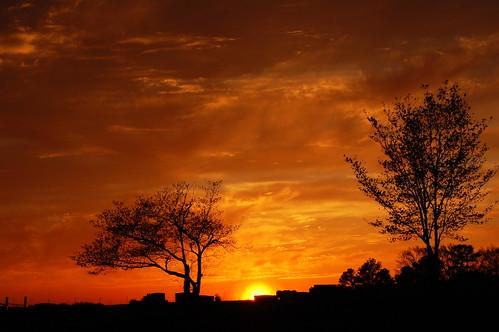 Sunset Over Douglas Cemetery