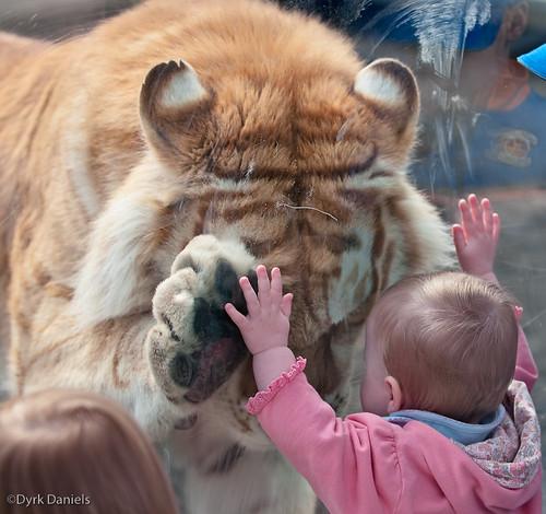 0904_CM_Zoo_18_427