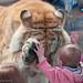 0904_CM_Zoo_18_427 by Bodokitty