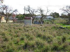 Embleton Derelict