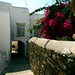 Greece_Cyclades_Naxos_Naxos Old Town