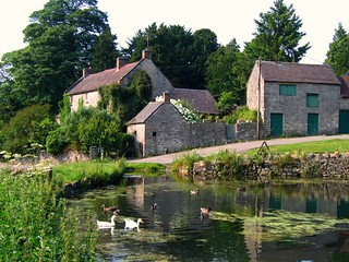 The Duck Pond at Tissington, Derbyshire