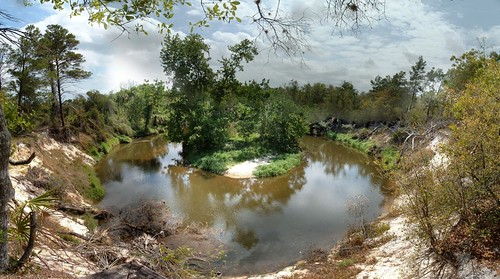 park panorama nature creek river florida brevard hugin