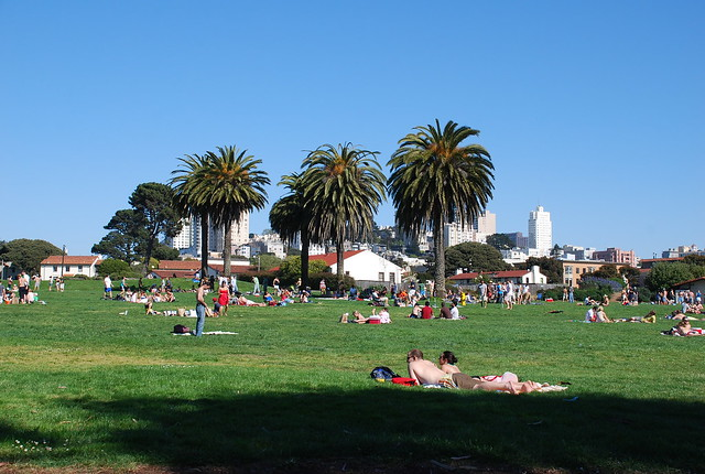 Fort Mason park in the sun