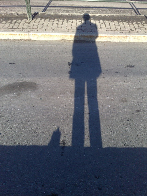 Header of A Shadow of a Man