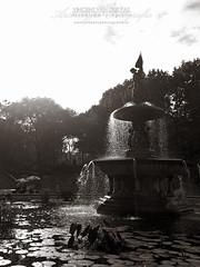 NYC Fountain CP