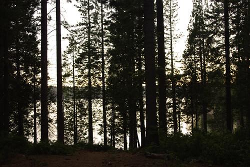california trees sunset summer peace pentax 365 paxil shaverlake thesad ilovecalifornia k200d pentaxk200d