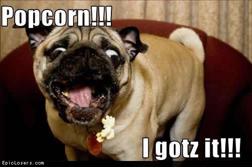 Funny Meme Eating Popcorn : Popcorn loldogs flickr photo sharing