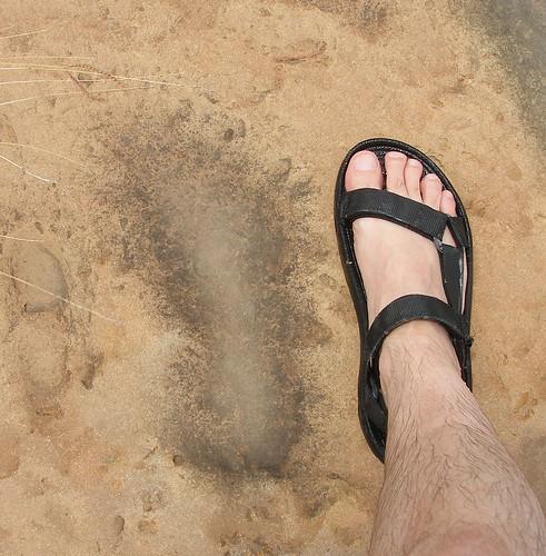 """Nueces """"footprint"""""""