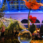 Bellagio Casino & Resort Conservatory