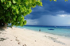 white sand beach of moalboal,cebu