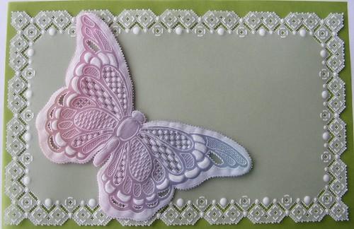 rainbow butterfly - 無料写真検索fotoq