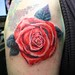 rose tattoo by Mirek vel Stotker