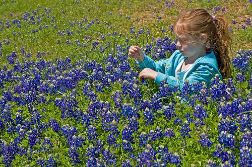 A Fun Moment in the Bluebonnets