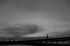 dawn on the bridge