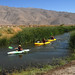 Lower Owens River Restoration