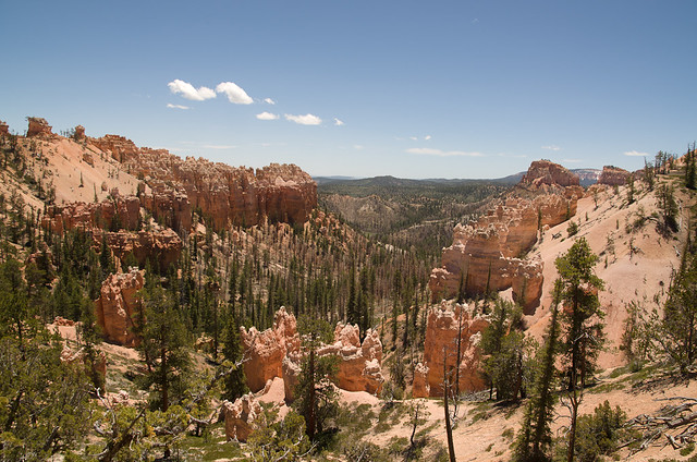 Swamp Canyon @ Bryce Canyon National Park