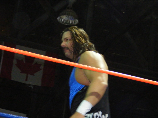 Header of Al Snow