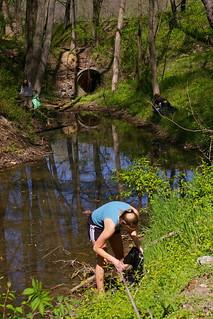 Gillies Creek 4.18.09 (16)