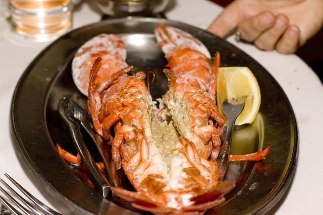 1 1/4 lb lobster | Flickr - Photo Sharing!