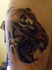 Tiger tattoo #3 My latest ink.