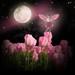 * Tulip Fairy * by pareeerica