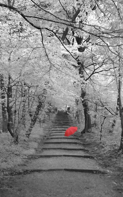 Red umbrella in a hidden world