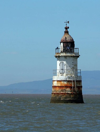 lune estuary plover scar  lighthouse 099