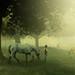 The Shepherd boy by Alkautsar Photography