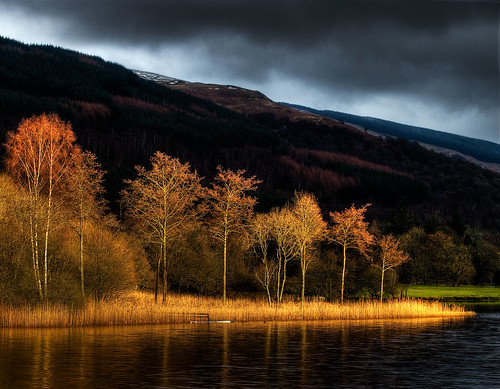 Winter Evening Sun... Loch Ard