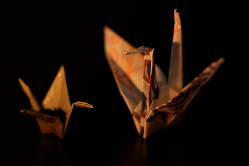 Paper Bird 45 Photos | origami | 325
