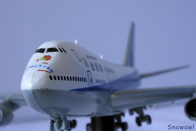 model plane of ANA