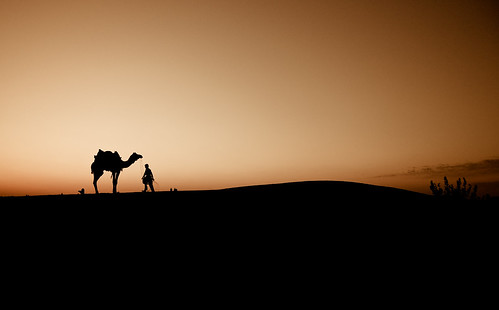 travel sunset india art silhouette interestingness skies desert indian horizon silhouettes explore camel indians 1855mm 2009 jaisalmer 336 flickrexplore d40 indiankids explored indiancolors ashumittal ashumittalphotography donotcopyitwillbebadkarma twittertuesday
