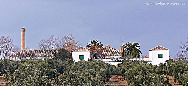 Hacienda la Laguna