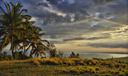 shadow sun tree grass clouds sunrise island gold tim haiti gorgeous palm goldenlight cayes flickrsbest
