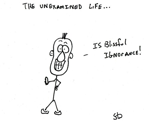 unexamined life