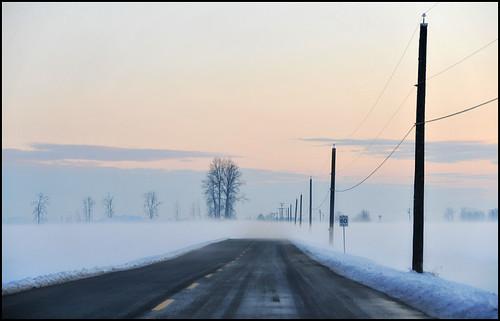 road sunset fog britishcolumbia pittmeadows reallyreallycoldfog