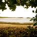 Playa La Esperanza - Manati 4 by Rafa's Photo Art - Pro