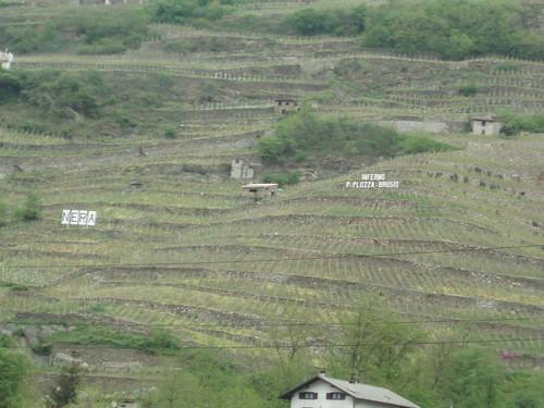 2006 Mai Valtellina 10