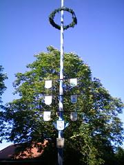 flower(0.0), light fixture(0.0), plant(0.0), christmas decoration(0.0), street light(0.0), tower(0.0), lighting(0.0), pole(1.0), tree(1.0), blue(1.0),