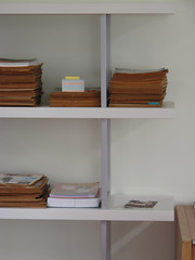 closet(0.0), cupboard(0.0), window covering(0.0), cabinetry(0.0), home(0.0), shelving(1.0), shelf(1.0), furniture(1.0), wood(1.0), room(1.0), bookcase(1.0), interior design(1.0),